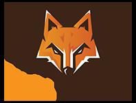Partenaire Foxito-Paintball